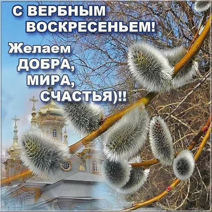 изображение_viber_2020-04-12_12-05-49